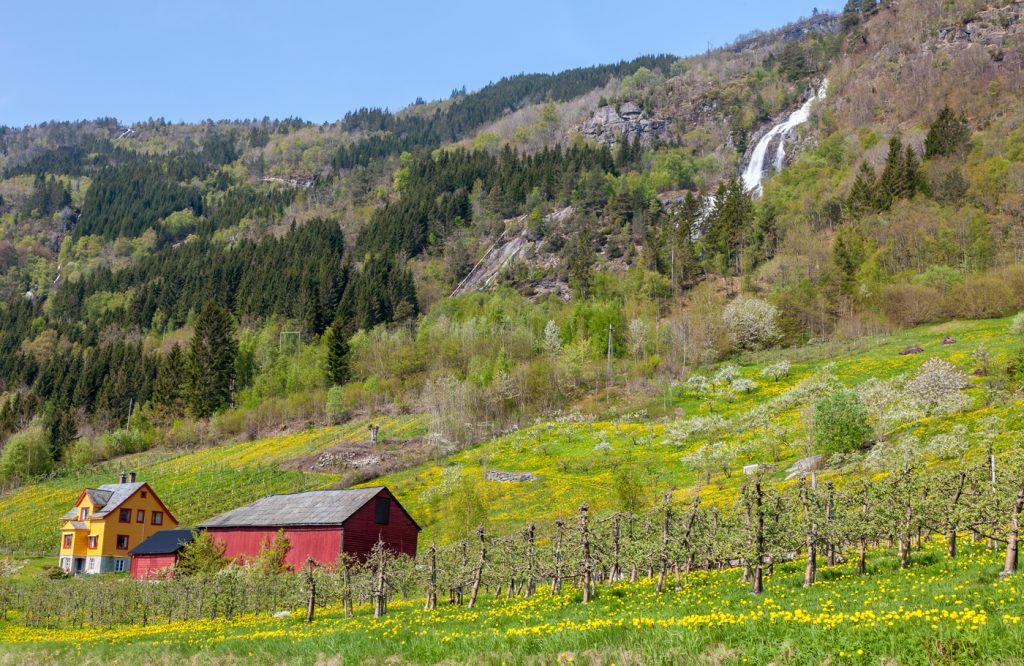 Graha Permata Group-Rumah Norway